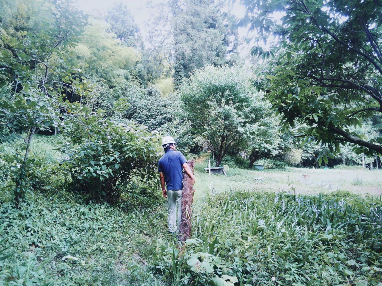 シュロの木の採集に日の出町の山と森を訪ねた渡邉監督。「ホウキづくり」ワークショップのリーダーを務めます。