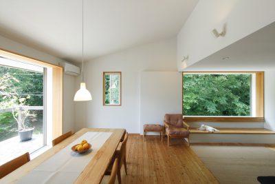 トトロの森を望む家