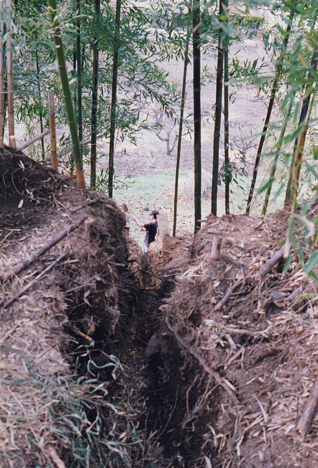 竹やぶの土を掘っていたら縄文土器のかけらがたくさん出てきました。