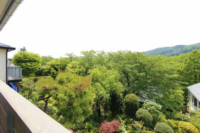 家の前に広がる山と緑と川のある景色。そこにいるだけで癒されます。