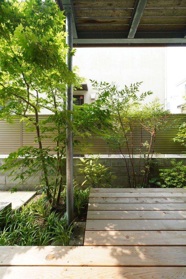 1階居室からみた庭