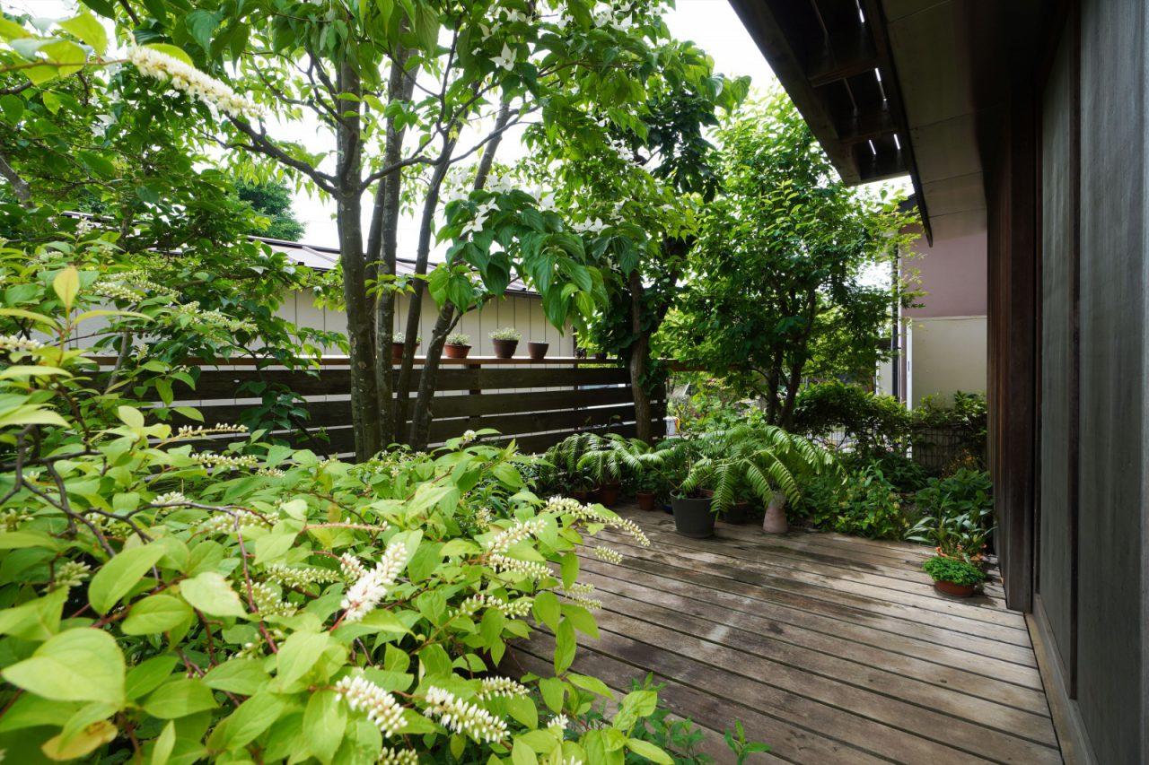 植栽をデッキと同じ高さに持ち上げることで、室内との一体感を増しています。