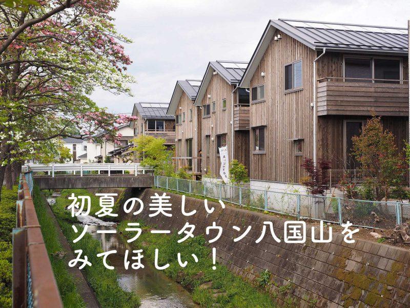 ソーラータウン八国山現地見楽会&オンライン見楽会(終了)