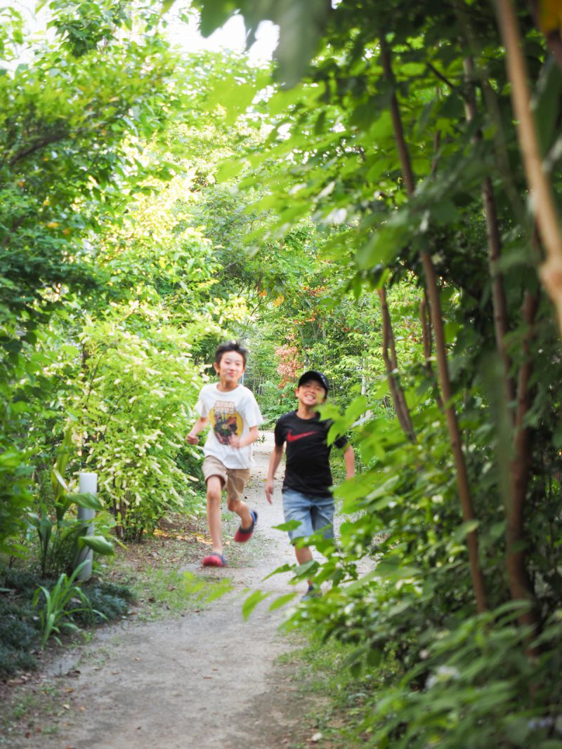 園路はタウンに暮らす子ども達の遊び場になっている。